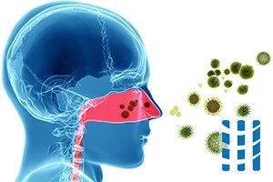 extrinsiek astma en hooikoorts allergenen
