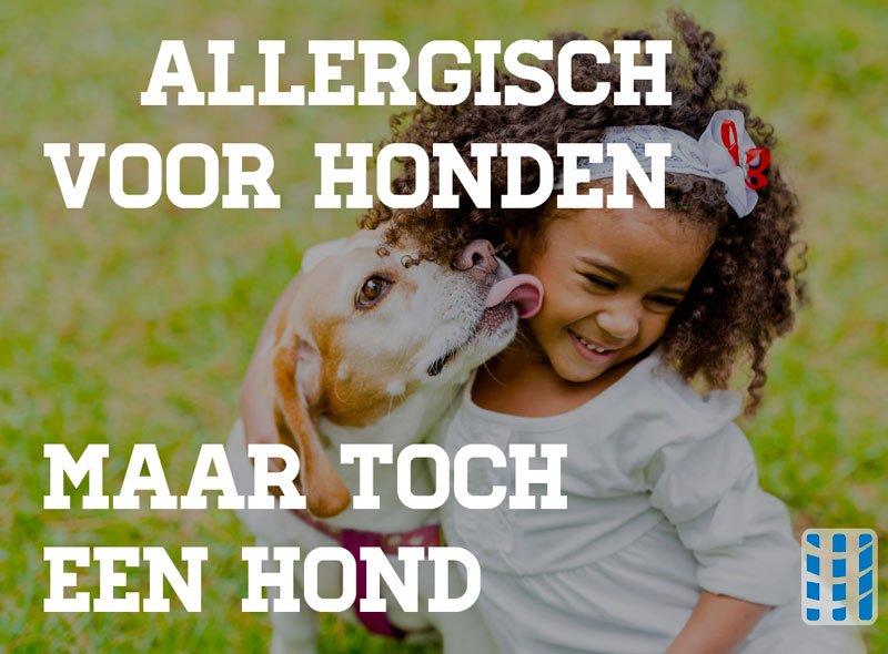 allergisch voor honden maar toch een hond luchtreinigeradvies
