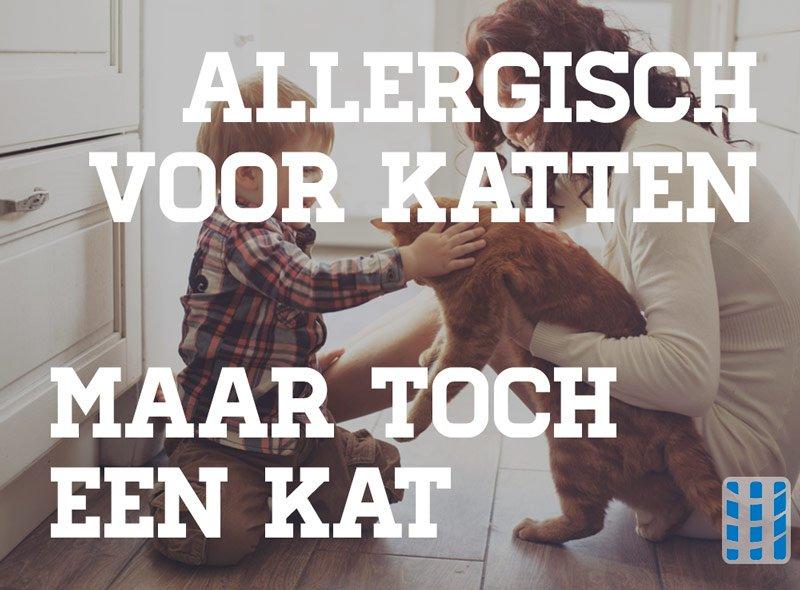 allergisch voor katten maar toch een kat luchtreinigeradvies