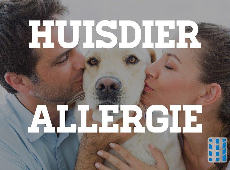 huisdierallergie geurtjes allergenen verwijderen luchtreinigeradvies