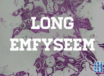 longweefsel beschadigd door longemfyseem