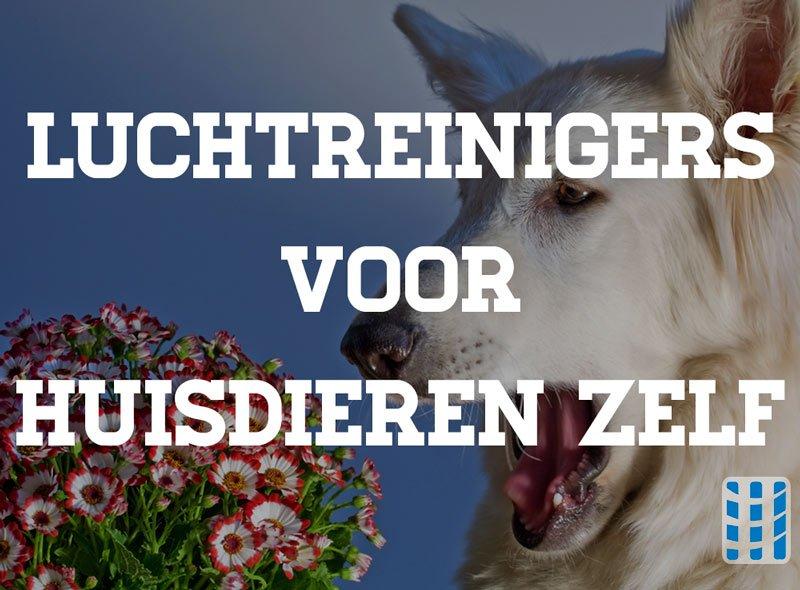 luchtreinigers voor huisdieren zelf luchtreinigeradvies