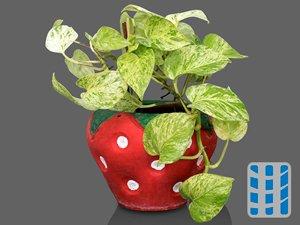 luchtzuiverende planten gouden photos luchtreinigeradvies