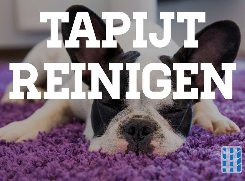 tapijt reinigen luchtreinigeradvies