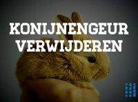 konijnen geur verwijderen uit de binnenlucht in huis luchtreinigeradvies